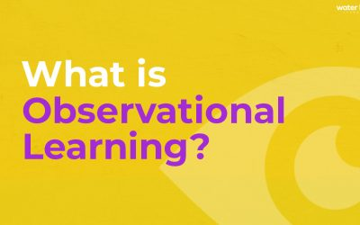 What is Observational Learning?